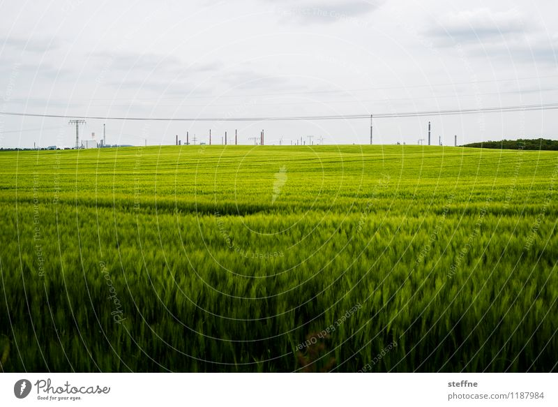 Nature and technology Skyline Work and employment Swedish Uckermark Refinery Chimney Industry Chemical Industry Field Grain field Spring Colour photo