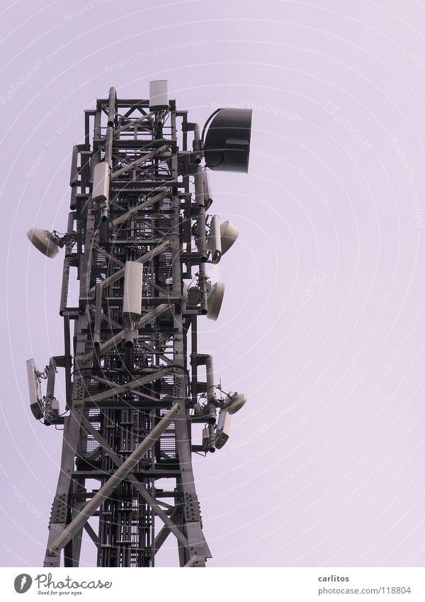 Fear Communicate Media Listening Panic Criminality Broadcasting tower Rescue Accumulate Data Mistrust Data storage Transmit Clarify Broacaster