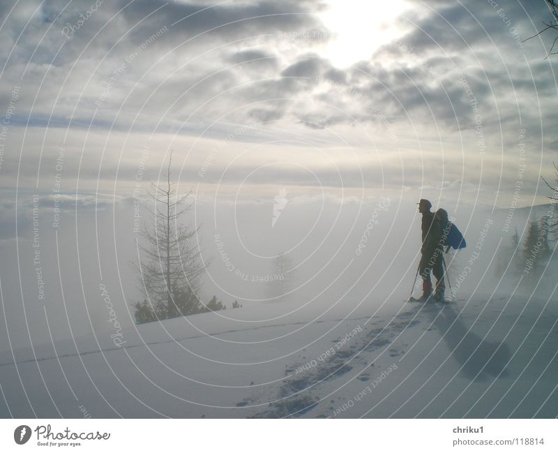 mist silence Mountaineering Snow shoes Winter sports Fog Snow track Hiking Man Tree Calm Loneliness High fog Clouds Alps log yoke Human being