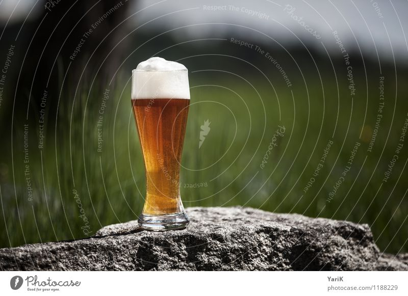 Cheers meal Lifestyle Alcoholic drinks Vacation & Travel Tourism Hiking Garden Happy Contentment Joie de vivre (Vitality) Beer white beer Bavaria Bavarian