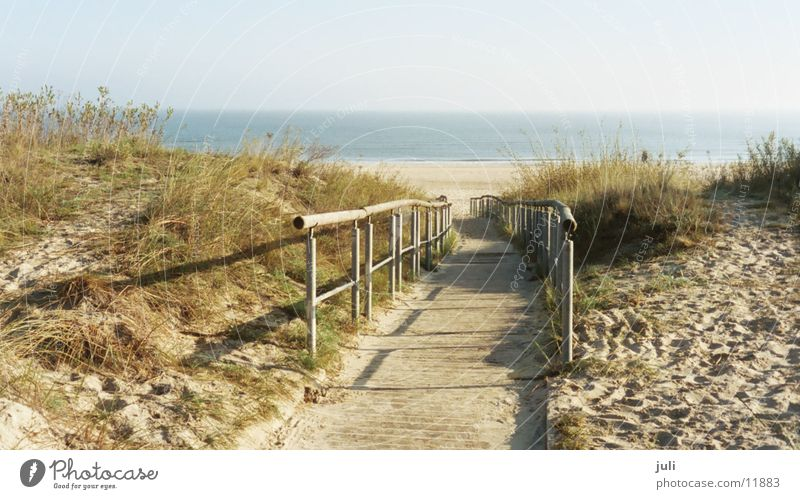 One has to go astray Ocean Beach Footbridge Heringsdorf Autumn Beach dune