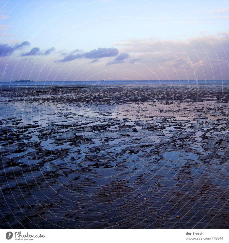 Sky Sun Ocean Green Blue Winter Beach Clouds Grass Sand Coast Wind Earth Clarity North Sea Mud flats