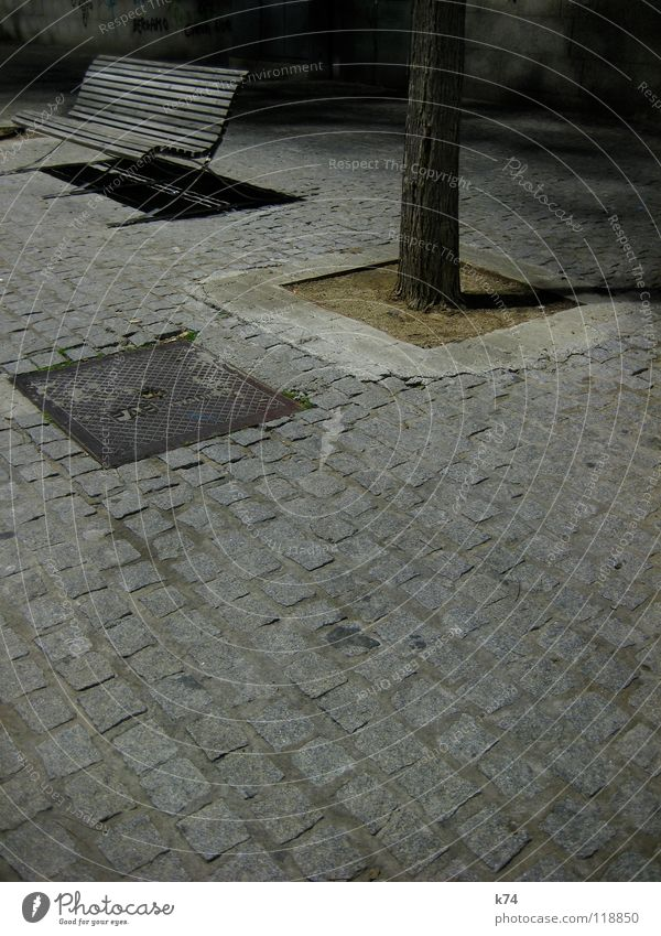 Barcelona Harbour Gray Night Cobblestones Tree Empty Hard Calm Loneliness Exterior shot Bench Sadness