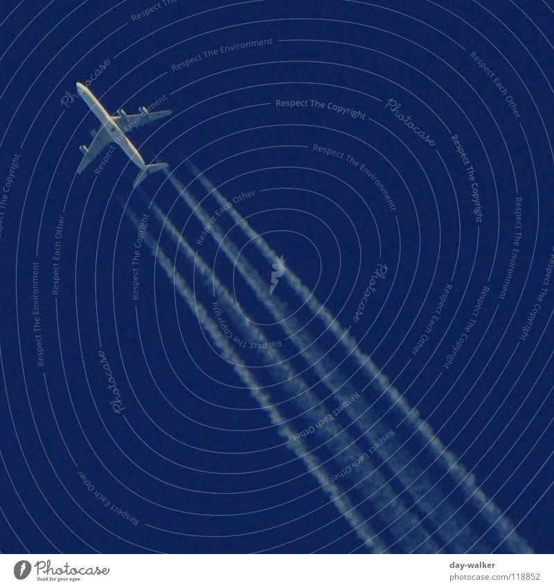 Sky Blue White Vacation & Travel Freedom Air Line Airplane Aviation Stripe Wing Tracks Diagonal Direction Tilt