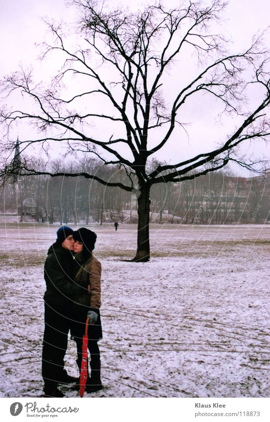 SENSE DISTANCE :. Love Kissing Umbrella Winter Caresses Far-off places Intimacy Hatred Defensive Touch Dresden Park Tree Loneliness Boredom Youth (Young adults)