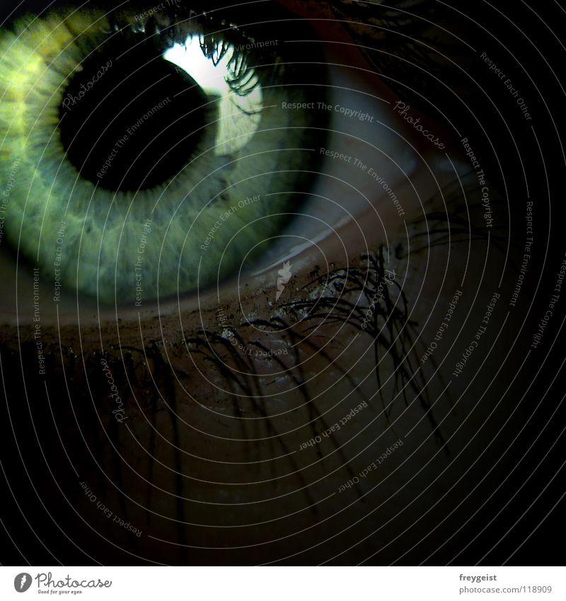 Blue Green Beautiful Black Eyes Gray Style Iris