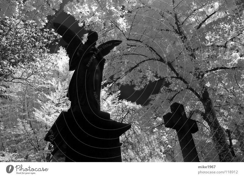 White Black Death Angel Grief Munich Distress Cemetery