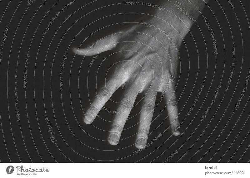 musician's hands Hand Guitarist Masculine Narrow Beautiful Human being