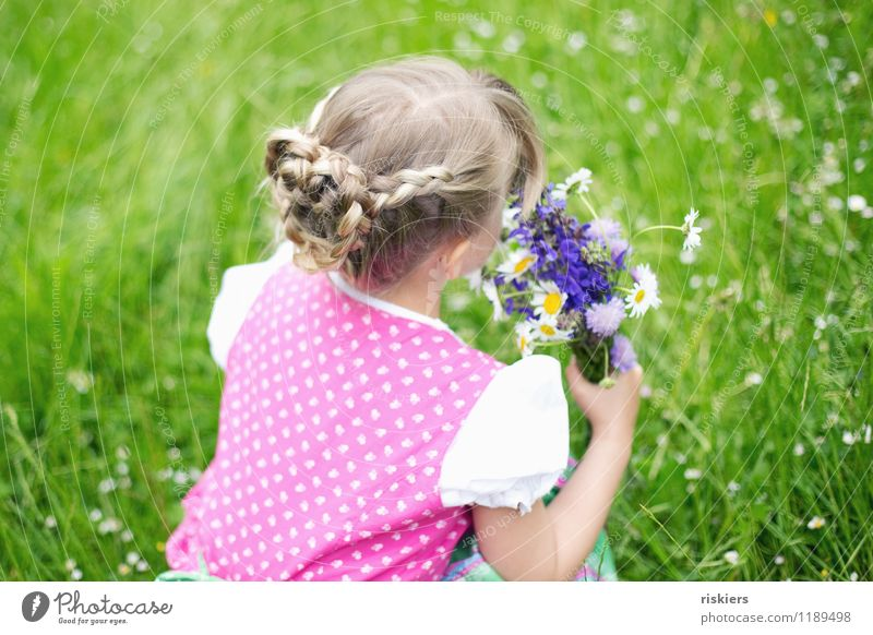 meadow child Human being Feminine Child Girl Infancy 1 3 - 8 years Environment Nature Spring Summer Flower Bouquet Meadow Discover To hold on Looking Dream