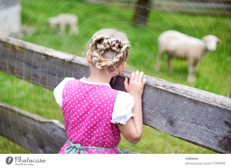 Human being Child Nature Summer Landscape Animal Girl Environment Spring Meadow Natural Feminine Hair and hairstyles Contentment Idyll Infancy