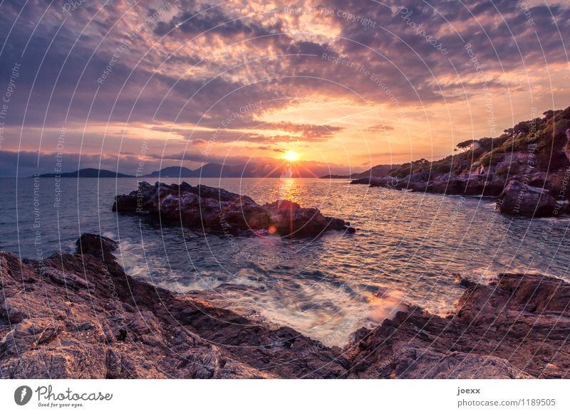You breathe in, you breathe out. Summer Sun Ocean Landscape Sky Clouds Horizon Sunrise Sunset Sunlight Beautiful weather Rock Waves Coast Maritime Brown Orange