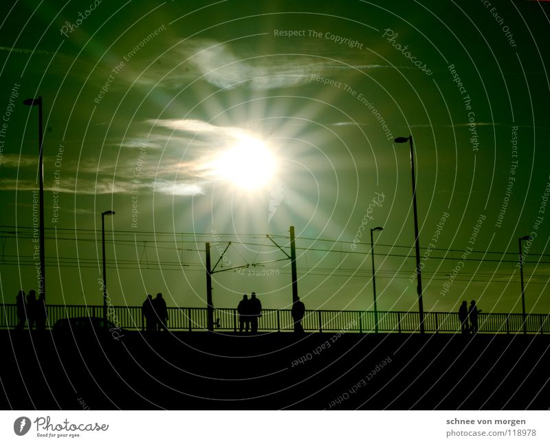 Human being Sun Bright Bridge To go for a walk Rhine Sunday
