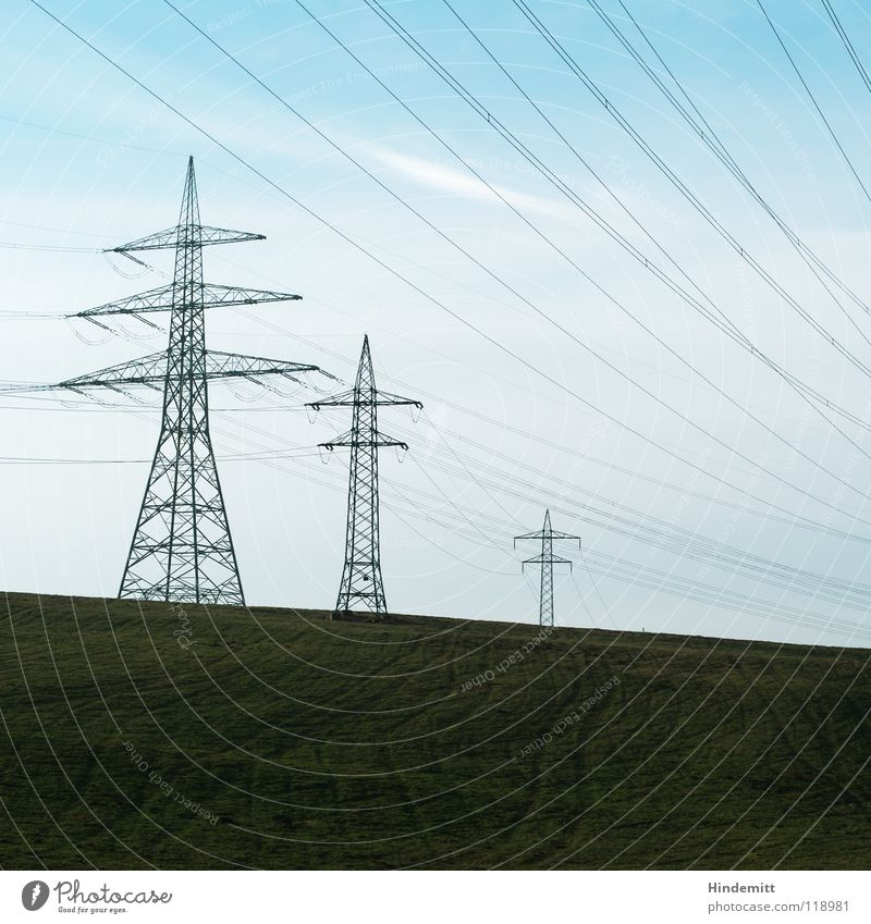 Cable spaghetti with cutlery Electricity pylon Fog Tree Bushes Dark Field Winter Autumn Green High voltage power line Energy crisis Industry Might Bright Blue
