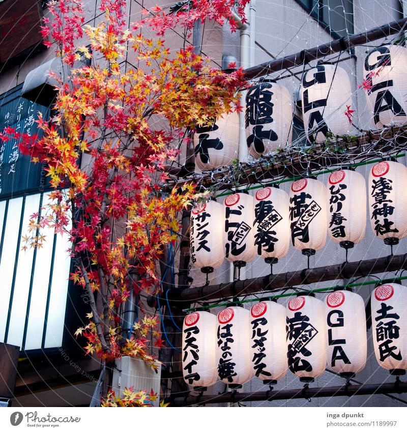 Nature Plant Environment Lamp Art Facade Decoration Modern Characters Advertising Lampion Japan Tokyo Japanese Green facade Asakusa Kannon temple