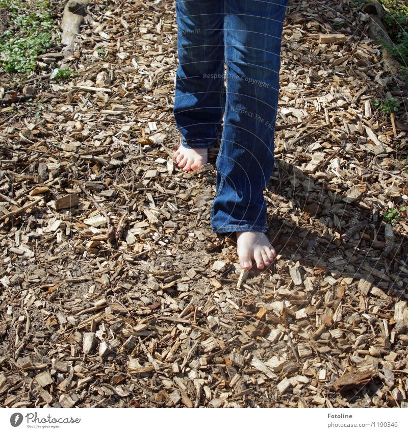 Finally barefoot again! Human being Child Infancy Feet 1 Bright Warmth Blue Brown Barefoot barefoot path Jeans Denim blue Wood shavings Floor covering