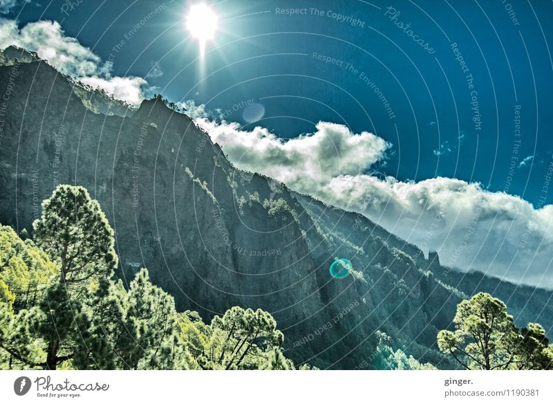 Sky Nature Blue Plant Green Sun Tree Landscape Clouds Forest Environment Mountain Warmth Spring Rock Weather