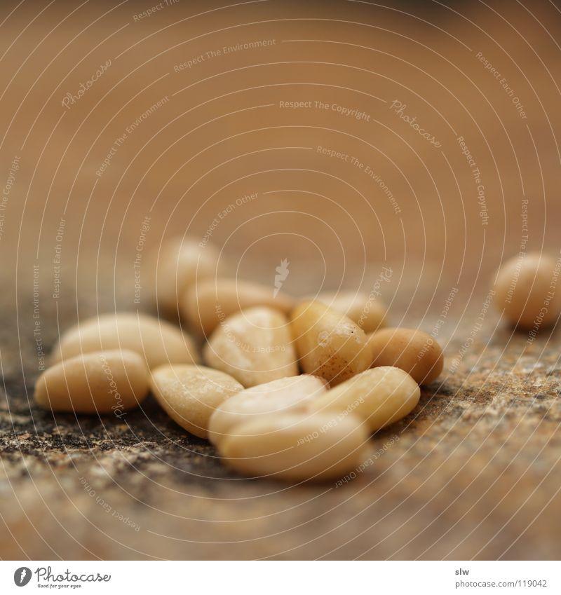 Nutrition Kernels & Pits & Stones Mediterranean Stone pine