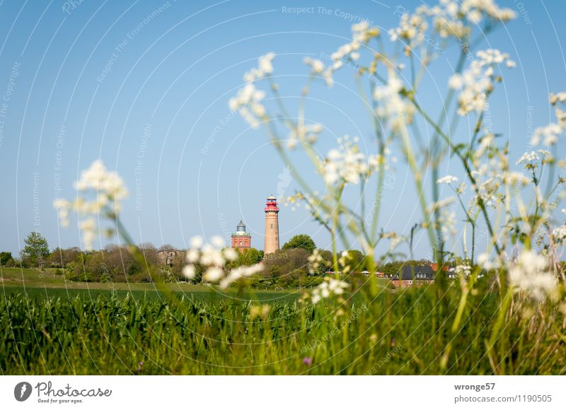 Sky Vacation & Travel Blue Plant Green Summer White Landscape Far-off places Germany Horizon Field Trip Europe Beautiful weather Baltic Sea