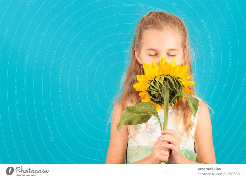 Smell of summer Beautiful Summer Child Girl 8 - 13 years Infancy Blossom Blonde Small Blue cheerful closed eyes Horizontal one spring Sunflower young smell