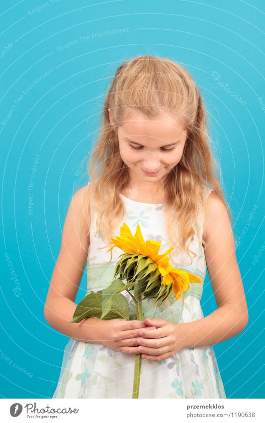 Girl with sunflower Human being Child Blue Beautiful Summer Blossom Small Infancy Blonde Smiling Dress 8 - 13 years Vertical Sunflower
