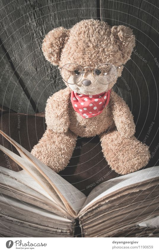 Children teddy bear Joy Illness Leisure and hobbies Reading Human being Girl Infancy Book Animal Toys Teddy bear Smiling Sit Small Cute Soft Brown White Bear