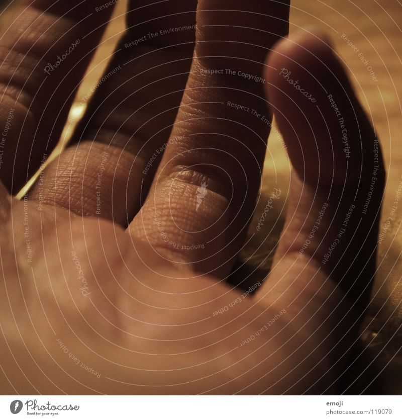fingers Hand Fingers Time DNA Private Old Groomed Take Skin color Scythe Craft (trade) Fine Delicate Rough Shows Soft Round Depth of field Near