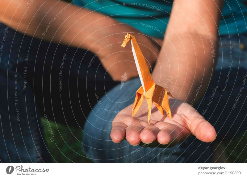 Origami orange color giraffe Nature Vacation & Travel White Hand Joy Animal Yellow Natural Playing Art Park Design Wild Decoration Tourism Creativity