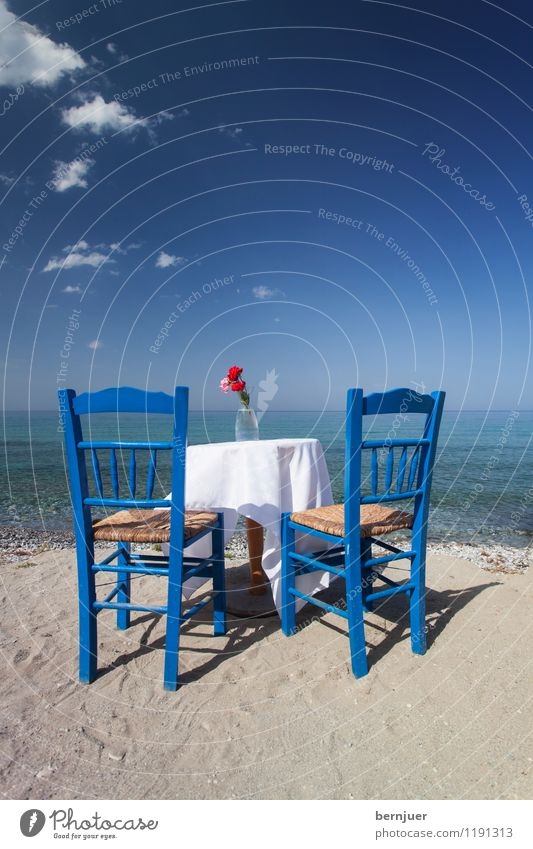 carnation revolution Lifestyle Style Vacation & Travel Tourism Summer Summer vacation Sun Beach Ocean Waves Furniture Chair Table Blossoming Living or residing
