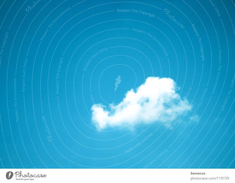 I did it my way Sky Clouds White Loneliness Hermit Pioneer Sky blue Absorbent cotton Heap Heavenly Turquoise Calm Relaxation Summer Blue cloud sky-blue