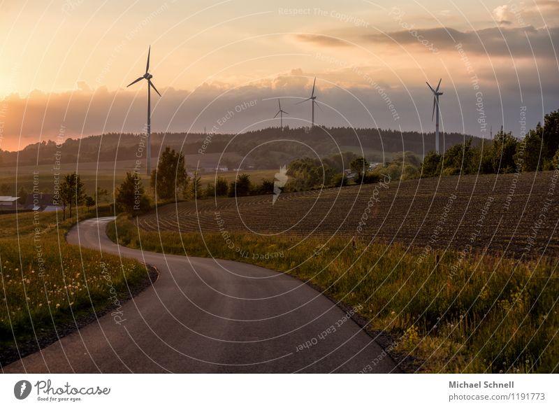 landscape curves Wind energy plant Environment Nature Sunrise Sunset Hill Sauerland Transport Street Curve Sustainability Far-off places Colour photo
