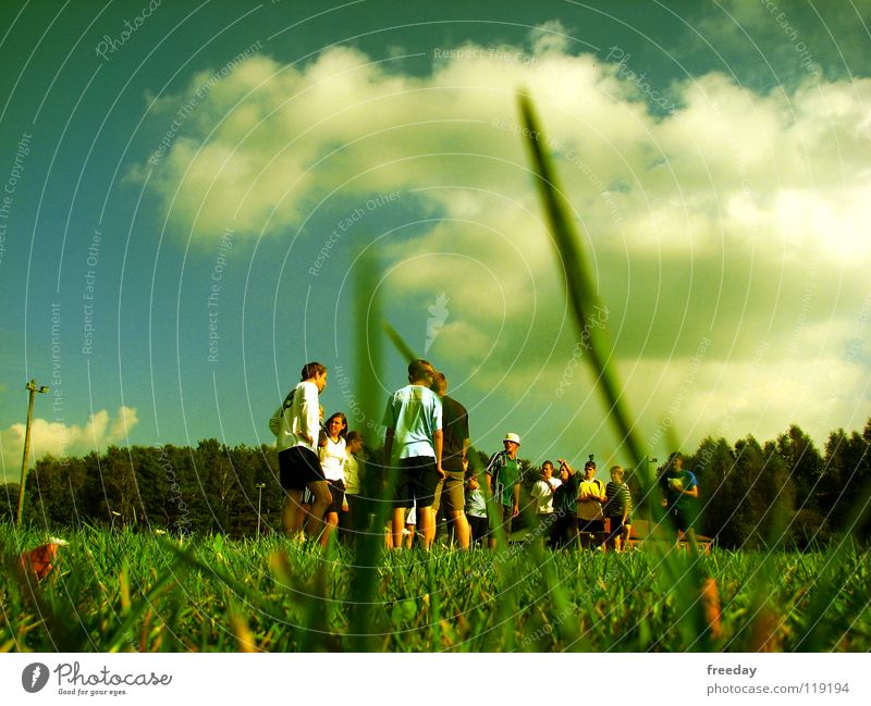 Human being Nature Youth (Young adults) Blue White Green Beautiful Summer Animal Colour Clouds Landscape Dark Playing Movement Lanes & trails