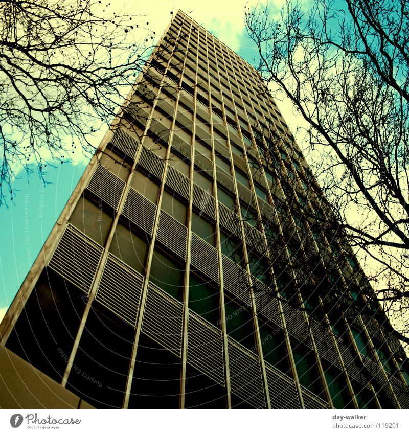 Aqua Tower High-rise Window Surface Facade Glas facade Clouds Mint green Turquoise Light Dark Tree Aspire Work and employment Office building Public service