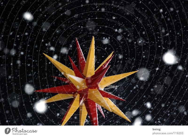 I survived Knut Star (Symbol) Snow Snowfall Winter Christmas & Advent Sky Trickle Calm Night Point Prongs Russet Cold Christmas Fair The Orient Donation Future