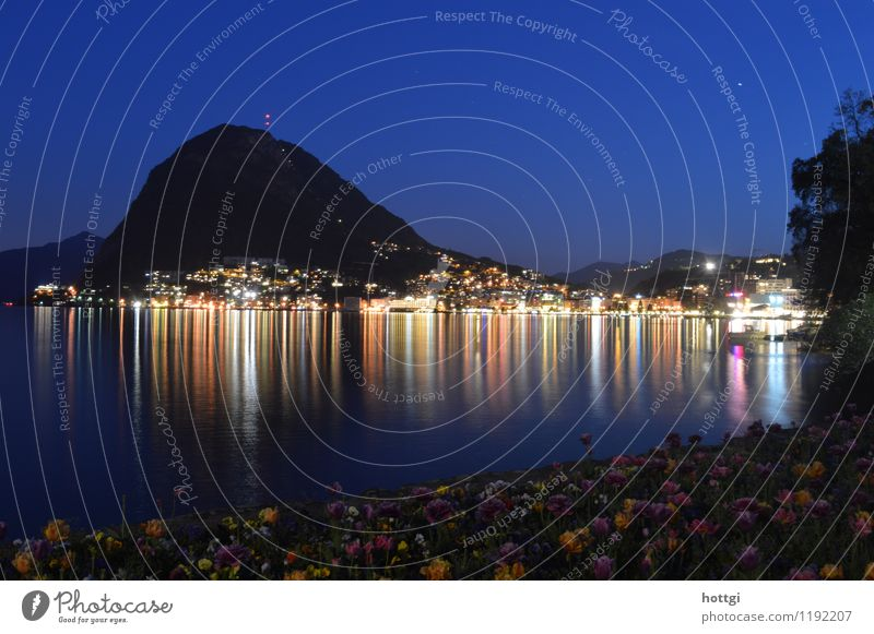 Lugano Town Lighthouse Landmark Headscarf Observe Natural Emotions Identity Colour photo Deserted Night Panorama (View) Looking into the camera