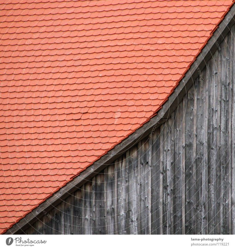 Strictly monotonously rising Barn Farm Agriculture Ranch Roof Wall (building) Brick Roofing tile Wood Wooden house Building Wood strip Gable roof Roof ridge