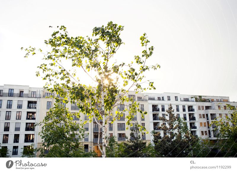 Sky Nature Summer Tree House (Residential Structure) Spring Architecture Living or residing Beautiful weather