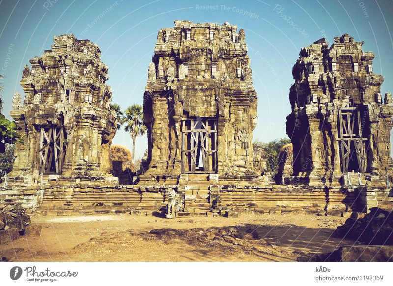 Stronger then me Architecture Environment Cloudless sky Summer Beautiful weather Warmth Palm tree Park Cambodia Old town Deserted Church Ruin Tower