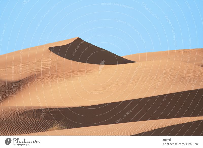 desert idyll Trip Adventure Far-off places Freedom Safari Expedition Camping Sand Beautiful weather Warmth Drought Desert Sahara Dune To dry up Exceptional
