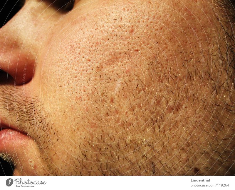 Man Face Hair and hairstyles Mouth Nose 3 4 Facial hair Day