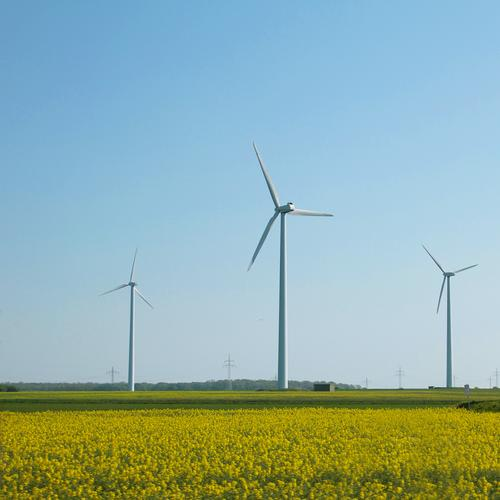 Green Energy industry Power Wind Technology Electricity Force Wind energy plant Environmental protection Ecological Solar Power Solar cell Climate change