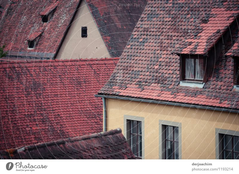 Roof to roof Harmonious Relaxation Environment Summer Town Bavaria Germany Small Town House (Residential Structure) Stone Observe To enjoy Looking Exceptional