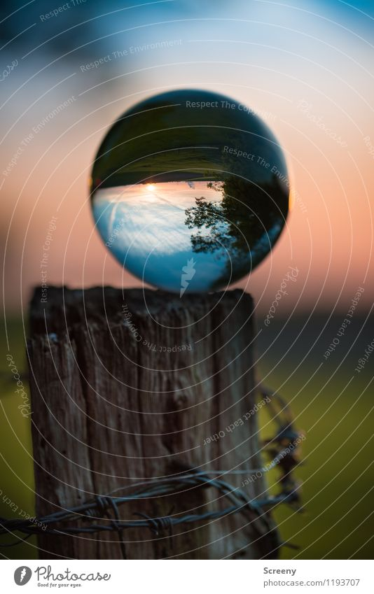 Worlds #4 Nature Landscape Plant Sky Sun Sunrise Sunset Spring Summer Beautiful weather Meadow Field Glass ball Crystal ball Wood Round Serene Calm Idyll