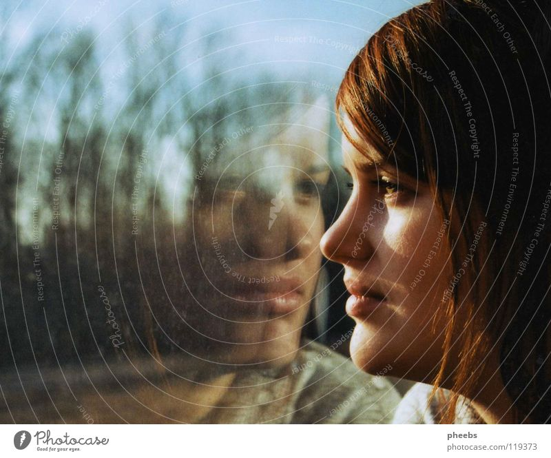 my second me Woman Window Reflection Tree Meadow Railroad Silhouette Portrait photograph Radiation Profile Face