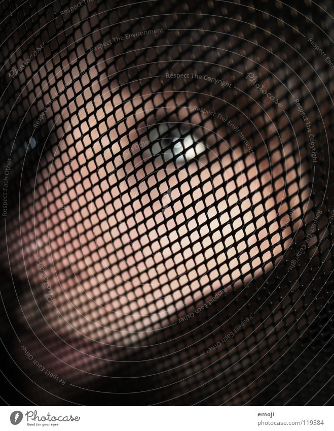 seeking help. Pattern Woman Feminine Lake Vista Fencing Grating Confession Grid Blur Funeral Grief Widow Emotions Distress Art Culture face Skin Looking Style