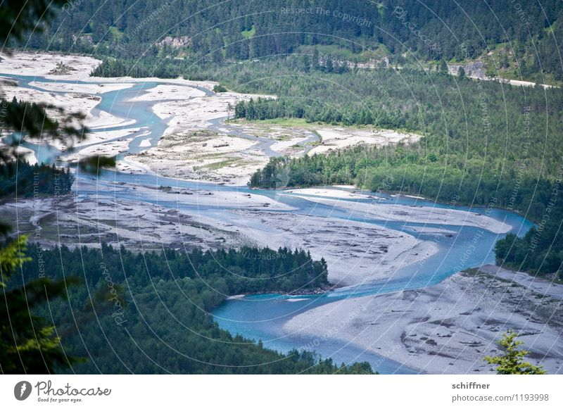 Do lechsd di nida! Environment Nature Landscape Plant Tree Forest Alps River bank Bay Blue Green Riverbed River Lech Flow Nature reserve