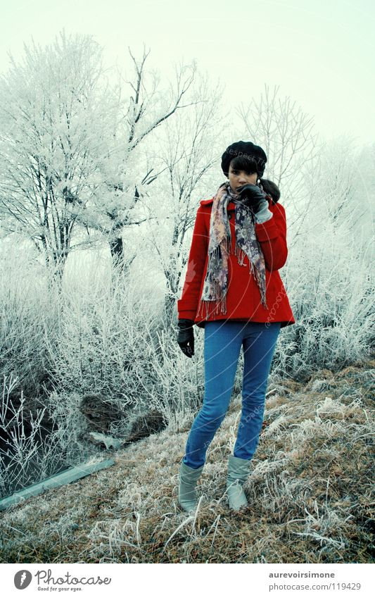 Blue Red Winter Cold Snow Emotions Ice Vintage