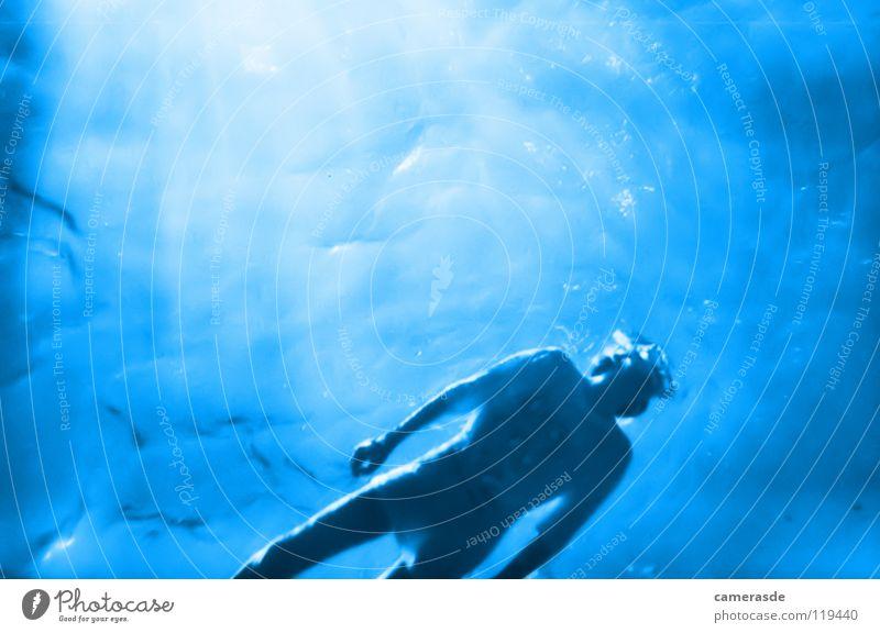 snorkeling Snorkeling Dive Ocean Egypt Aquatics Sun Water Blue Deep