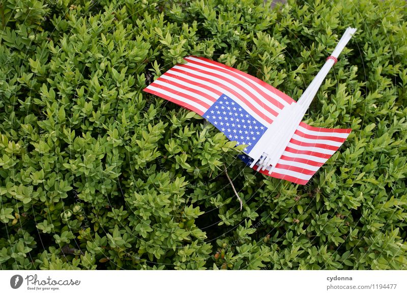 Nature Summer Feasts & Celebrations Friendship Dream Bushes Future Sign Might Belief Education Peace USA Flag Trust Event