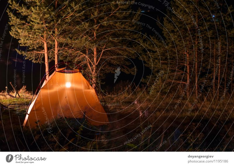 Orange tent in the forest Nature Vacation & Travel Summer Tree Landscape Dark Forest Black Mountain Yellow Lamp Leisure and hobbies Weather Wild Tourism Hiking