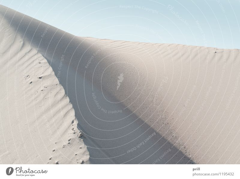 abstract sand Summer Beach Waves Nature Sand Warmth Hill Coast Desert Flock Dry Red White Quality sand dune Dune sunny detail Heap Accumulation Fine Grain